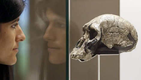 epaselect epa05201190 A woman looks at a homo rudolfensis skull during the presentation of the exhibition 'The Cradle of Humanity' at the CosmoCaixa exhibition hall in Barcelona, Spain, 08 March 2016. The exhibition, running from 09 March, features 200 items that were found in paleontological sites in the Great Rift Valley, to explain the origin and evolution of our ancestors, their behaviour and their technology.  EPA/ANDREU DALMAU