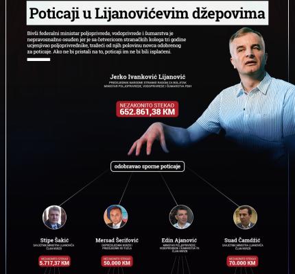 INFOGRAFIKA_LIJANOVIC_PORTALI