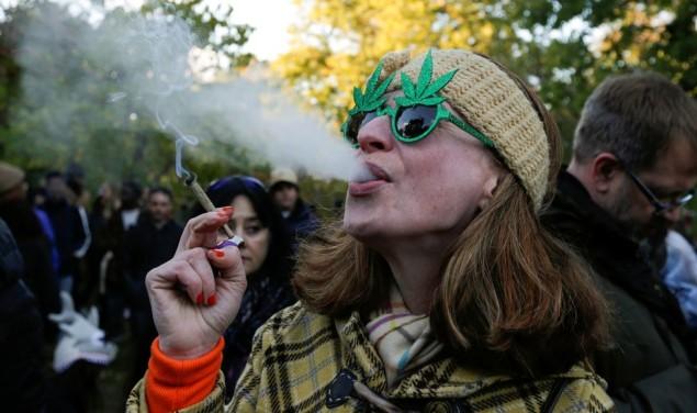 marihuana kanabis